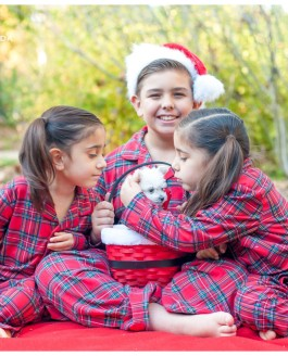 Descanso Gardens // Royal Twins – Family Christmas photos